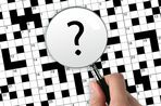 Trimmed around lip Crossword Clue